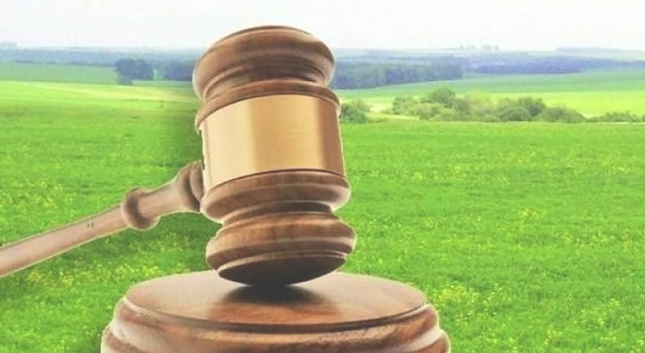 Суд передумав повертати 20 га розданої в Сокільниках землі