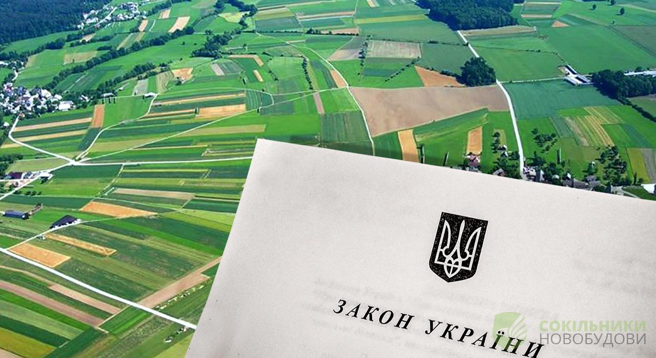 Державні землі за межами населених пунктів передадуть до комунальної власності сільрад