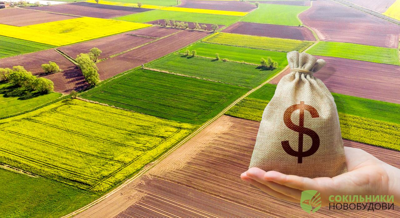 Українці можуть втратити свої земельні ділянки